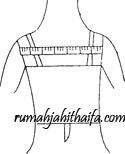 lebar-punggung